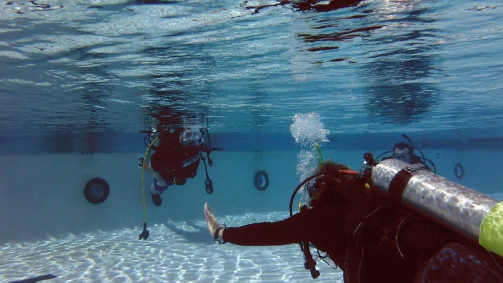 Scuba Diving: Expected Things On Your Diving Adventure