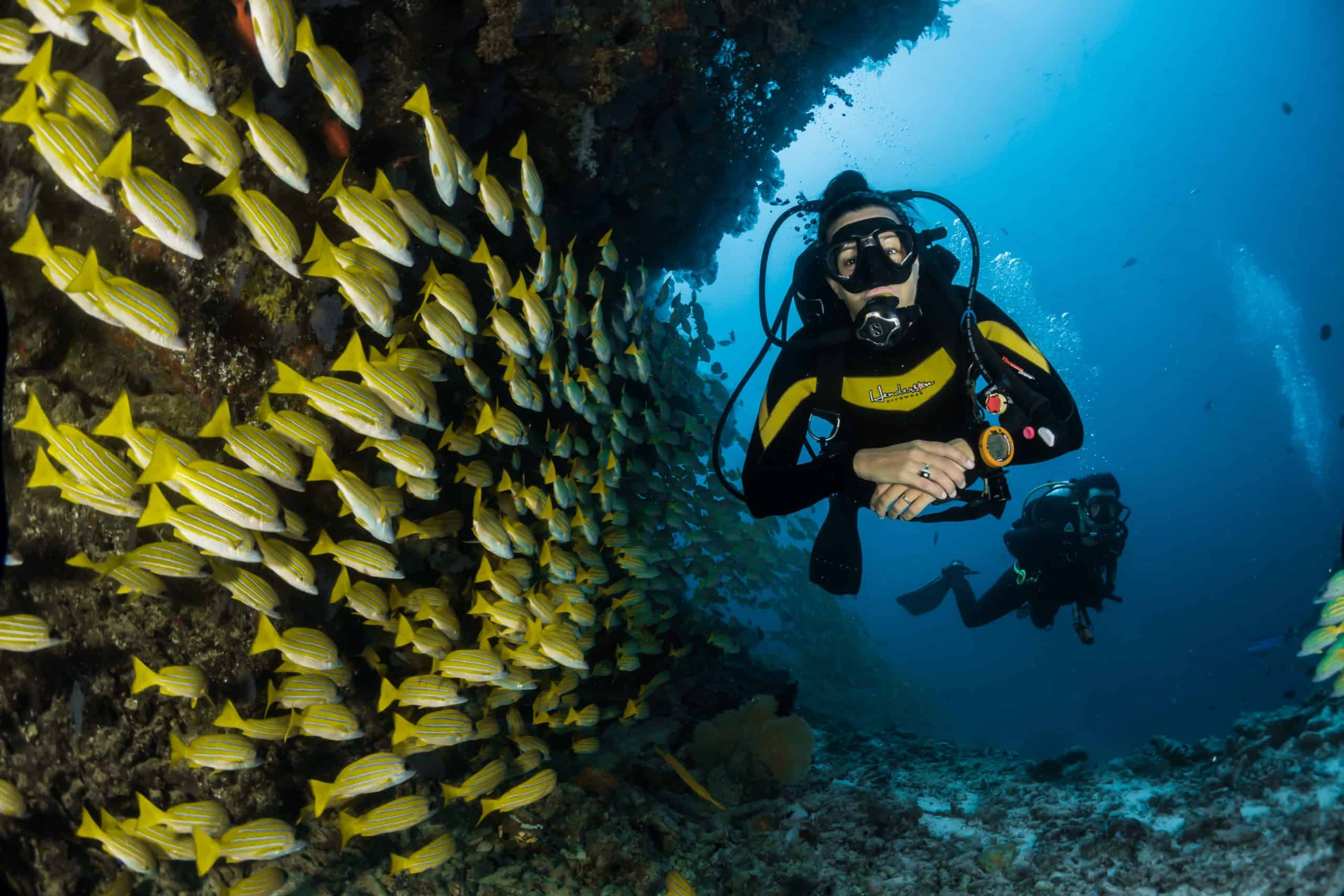 Scuba Diving Equipment For Beginner: Buying Your First Set