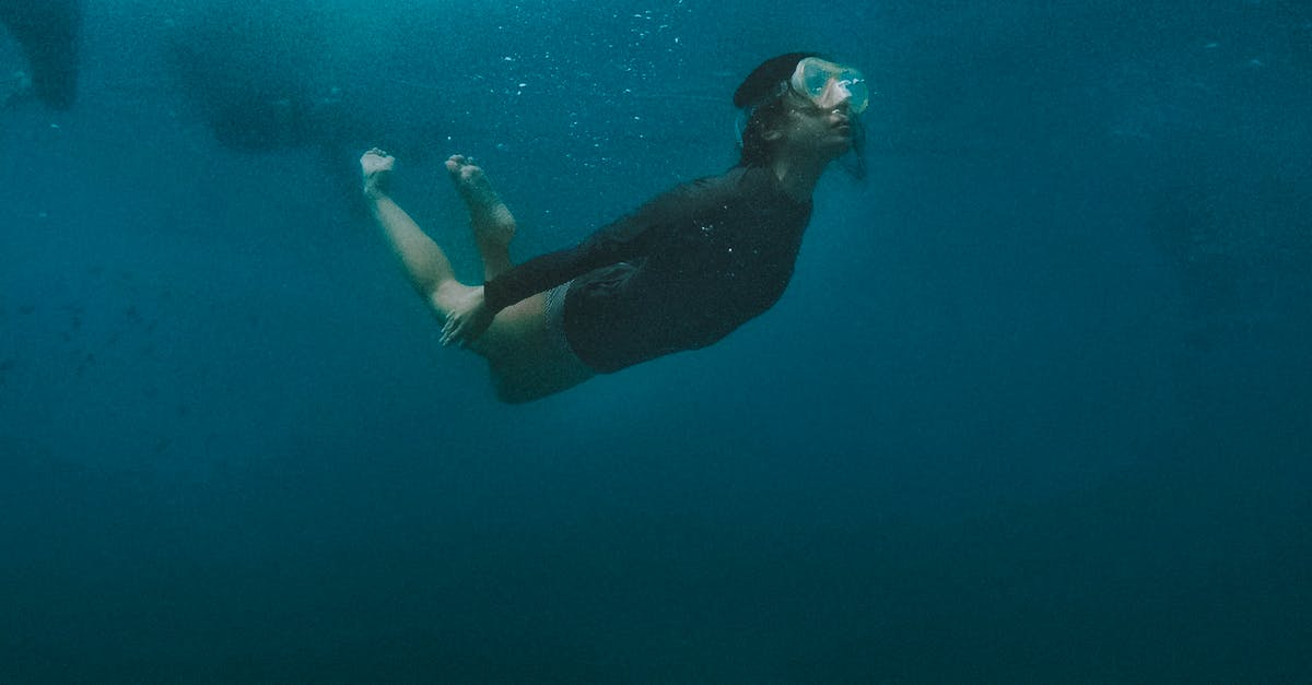 A person swimming in the water
